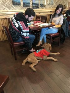 A couple sitting at a table with their dog.